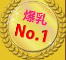15.爆乳No.1