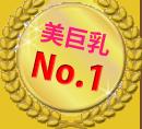 13.美巨乳No.1