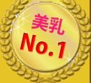 12.美乳No.1